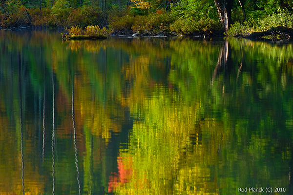 Autumn Reflections on Lake, Northern Michigan
