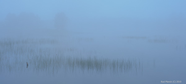 Fog Shrouded Pond, Northern Michigan