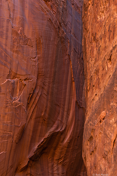 Wingate Sandstone, Grand Staircase-Escalante National Monument, UT