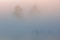 Foggy Dawn, Northern Michigan, Summer, Michigan